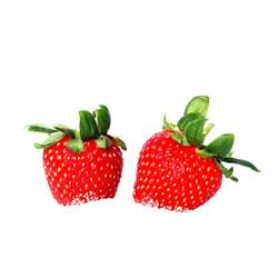 Valokuva kahdesta punaisesta mansikasta, joissa terälehtiä kannassa kiinni.
